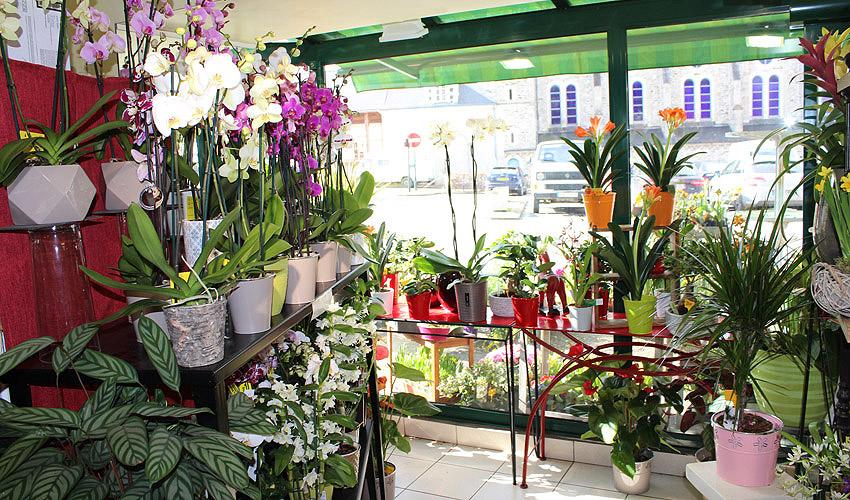 fleuriste plo rmel myriam fleurs florajet interflora. Black Bedroom Furniture Sets. Home Design Ideas